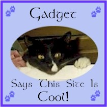 Gadget's Cool site
